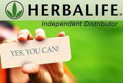 Herbalife distributors wanted